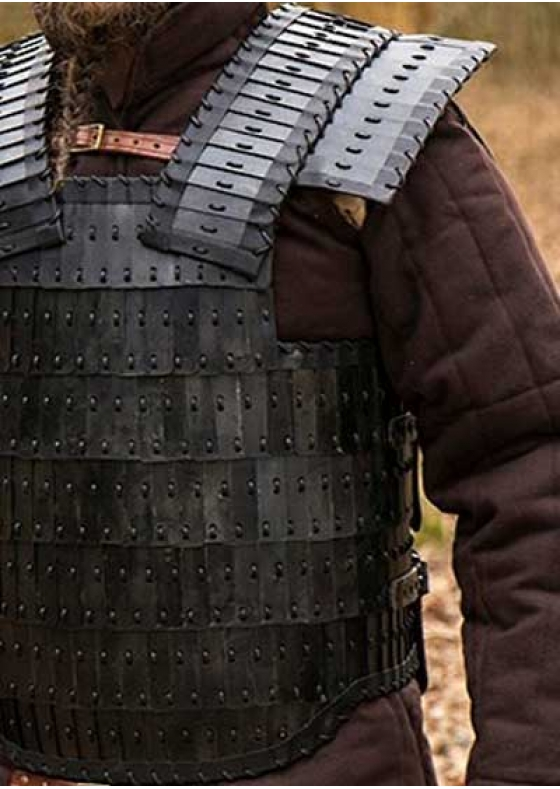 Functional Gothic Armour